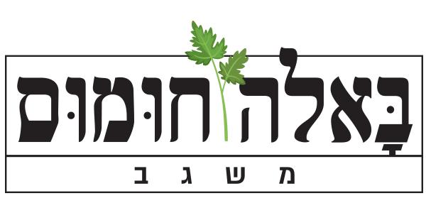 bala_logo.jpg